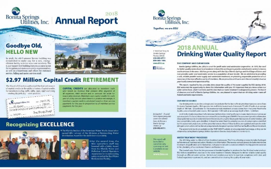 BSU's 2018 annual report, water quality report now available online